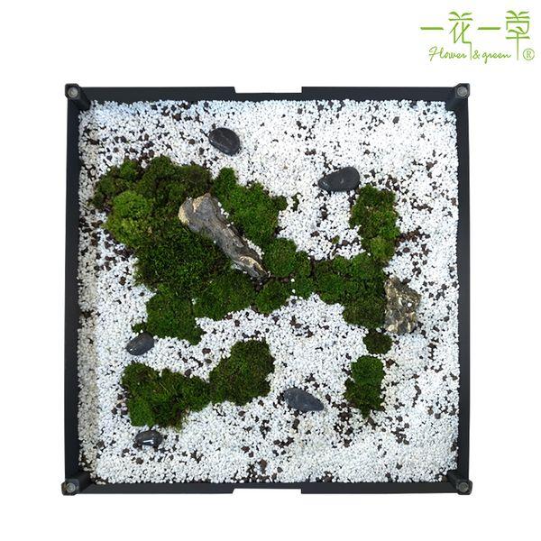 一花一草苔藓桌 生态家居 创意植物装饰家具 家居装饰艺术品