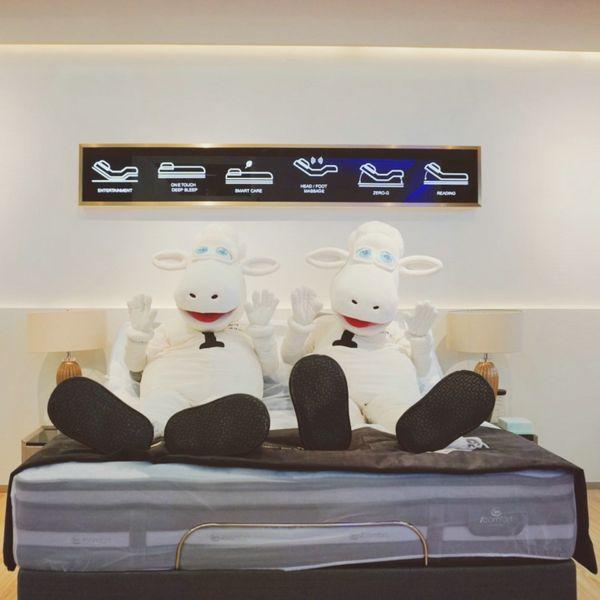 舒达-床垫