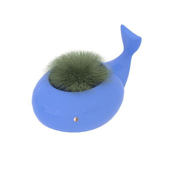 小鲸鱼花器