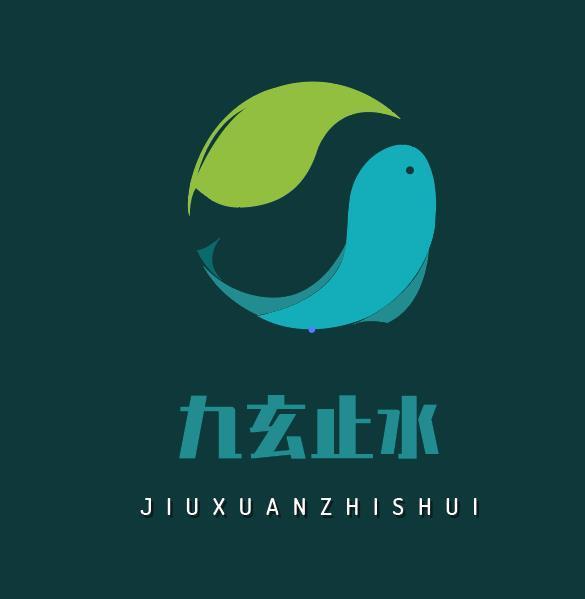 辽宁九玄止水环保科技有限公司