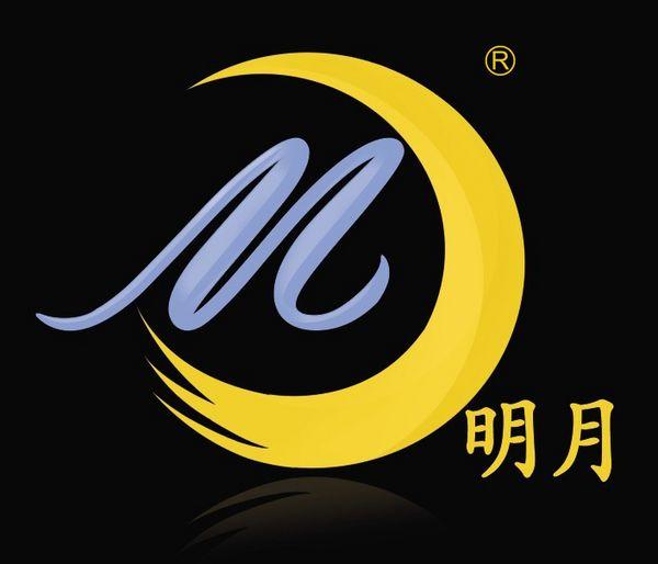 江西盛汇光学科技协同创新有限公司